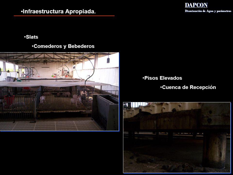 Infraestructura Apropiada. Slats Pisos Elevados Comederos y Bebederos Cuenca de Recepción DAPCON Disminución de Agua y parámetros DAPCON Disminución d