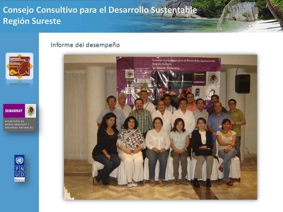 Consejo Consultivo para el Desarrollo Sustentable Región Sureste Informe del desempeño