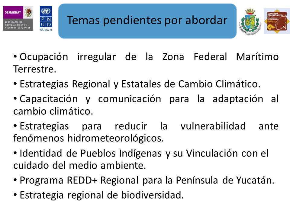 Ocupación irregular de la Zona Federal Marítimo Terrestre.