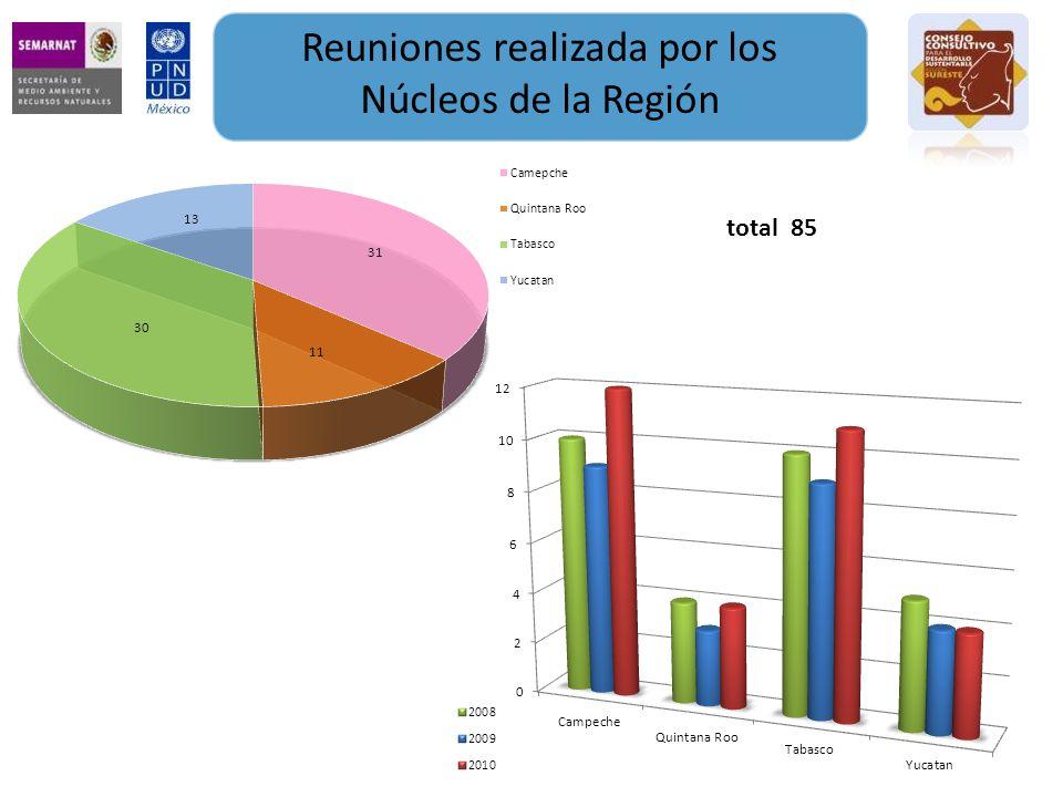 Reuniones realizada por los Núcleos de la Región total 85