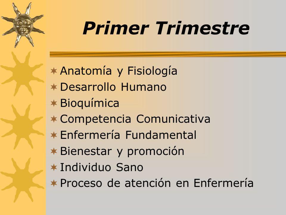 Primer Trimestre Anatomía y Fisiología Desarrollo Humano Bioquímica Competencia Comunicativa Enfermería Fundamental Bienestar y promoción Individuo Sa