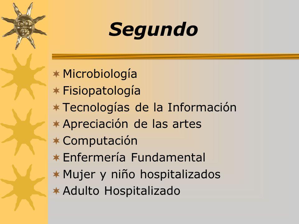 Segundo Microbiología Fisiopatología Tecnologías de la Información Apreciación de las artes Computación Enfermería Fundamental Mujer y niño hospitaliz