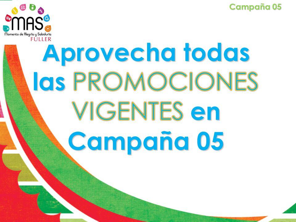 Campaña 05