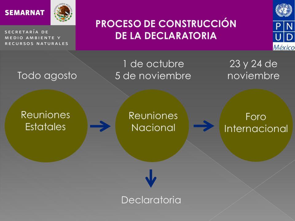 Haga clic para cambiar el estilo de título PROCESO DE CONSTRUCCIÓN DE LA DECLARATORIA Todo agosto 1 de octubre 5 de noviembre 23 y 24 de noviembre Reuniones Estatales Declaratoria Reuniones Nacional Foro Internacional