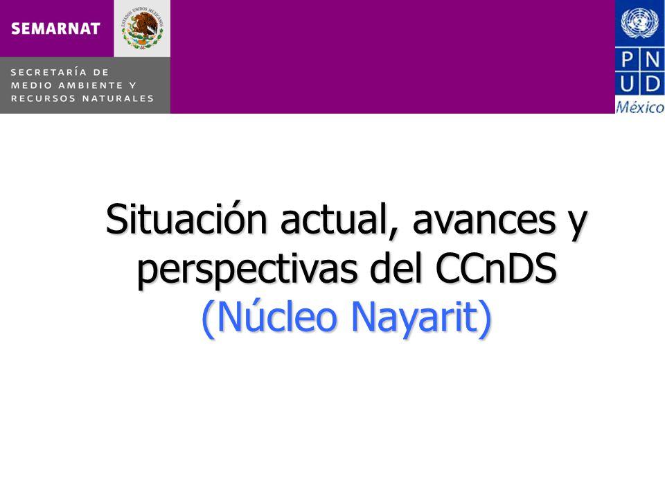 Situación actual, avances y perspectivas del CCnDS (Núcleo Nayarit)