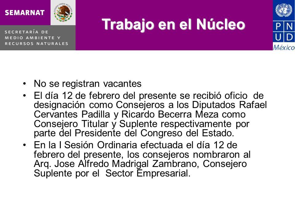 No se registran vacantes El día 12 de febrero del presente se recibió oficio de designación como Consejeros a los Diputados Rafael Cervantes Padilla y Ricardo Becerra Meza como Consejero Titular y Suplente respectivamente por parte del Presidente del Congreso del Estado.