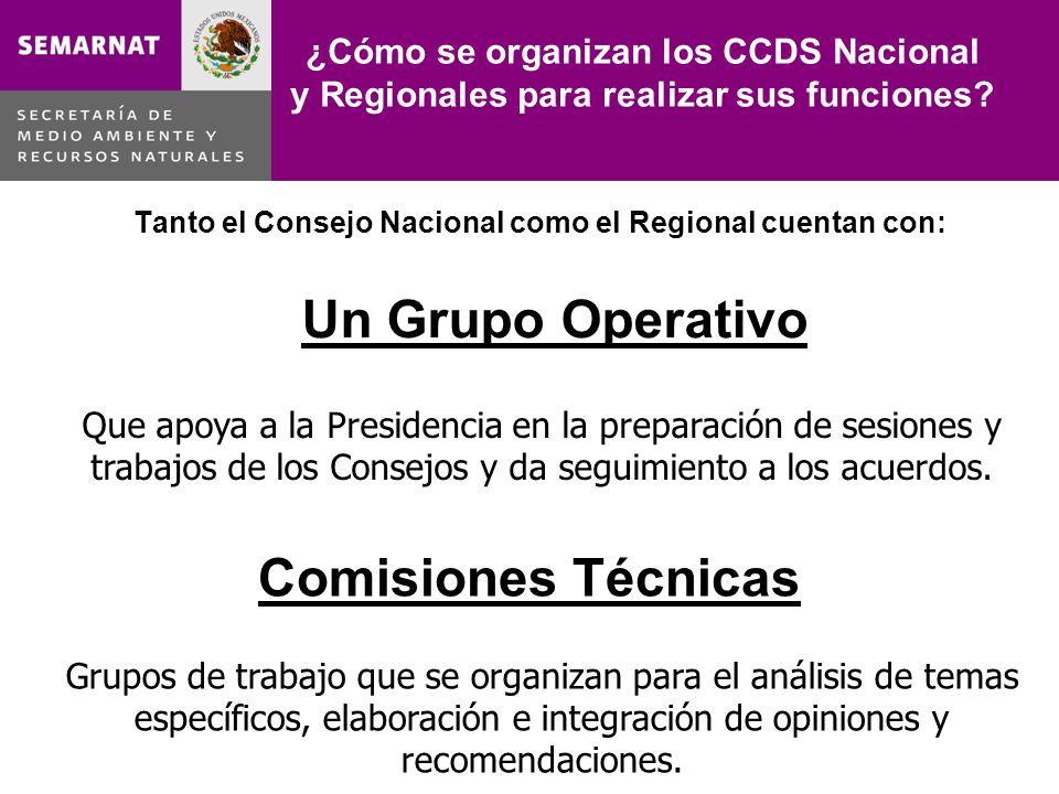 ¿Cómo se organizan los CCDS Nacional y Regionales para realizar sus funciones? Tanto el Consejo Nacional como el Regional cuentan con: Que apoya a la