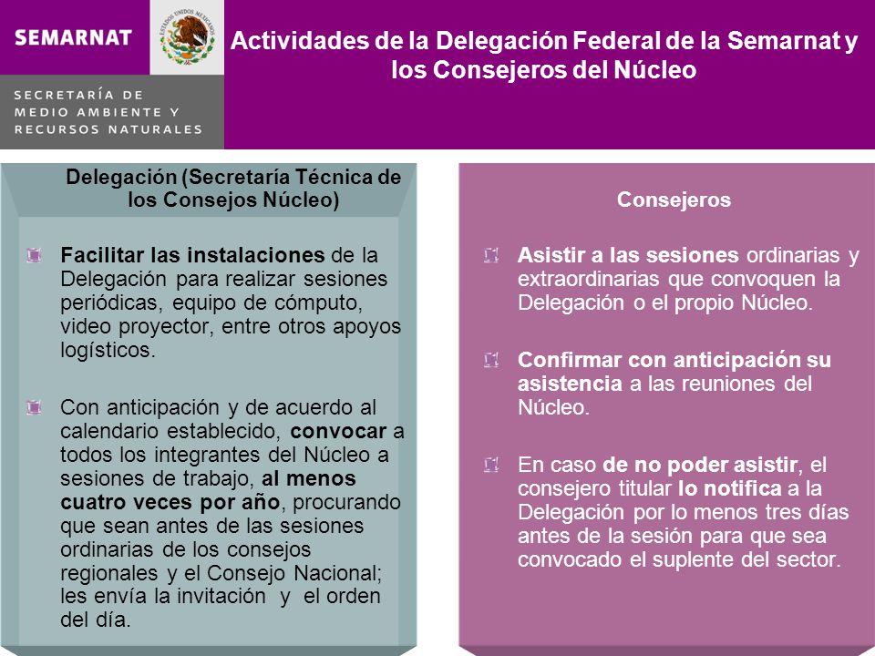 Delegación (Secretaría Técnica de los Consejos Núcleo) Facilitar las instalaciones de la Delegación para realizar sesiones periódicas, equipo de cómputo, video proyector, entre otros apoyos logísticos.