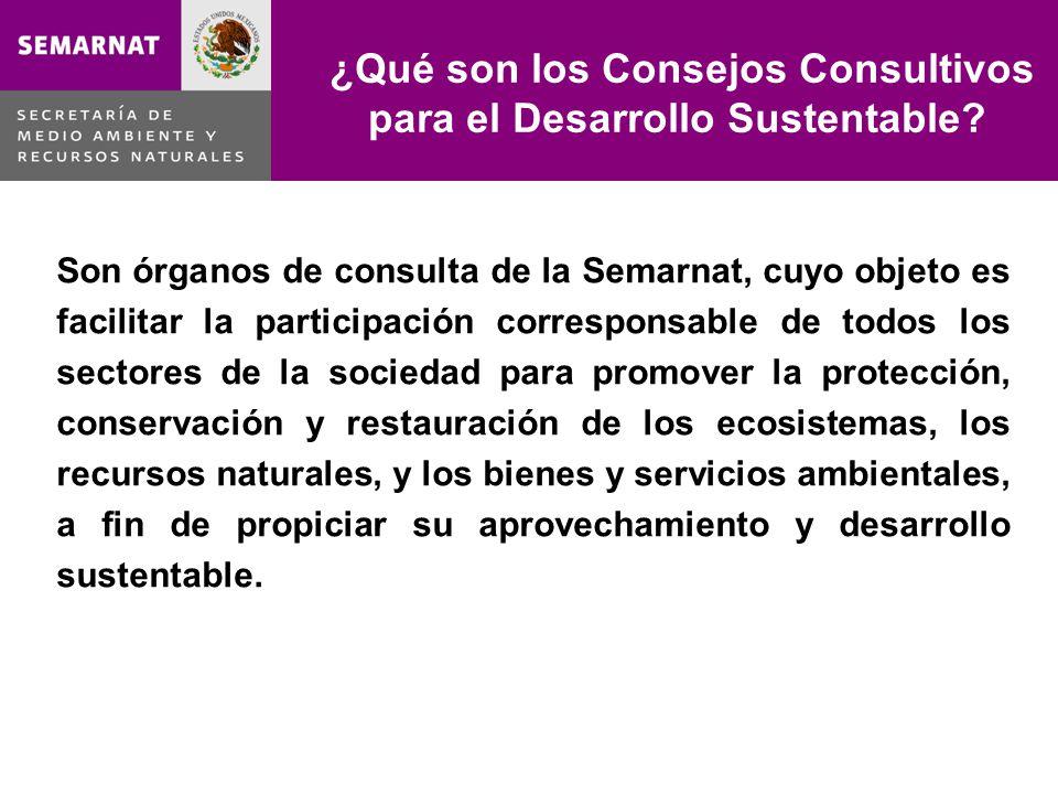 Son órganos de consulta de la Semarnat, cuyo objeto es facilitar la participación corresponsable de todos los sectores de la sociedad para promover la protección, conservación y restauración de los ecosistemas, los recursos naturales, y los bienes y servicios ambientales, a fin de propiciar su aprovechamiento y desarrollo sustentable.