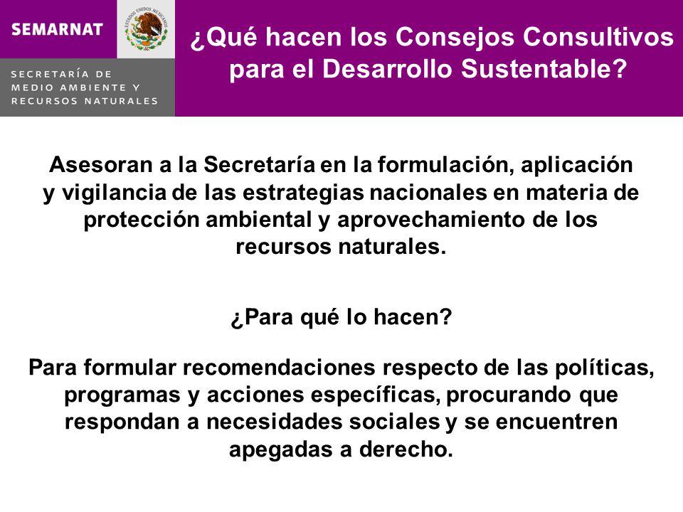 Asesoran a la Secretaría en la formulación, aplicación y vigilancia de las estrategias nacionales en materia de protección ambiental y aprovechamiento de los recursos naturales.