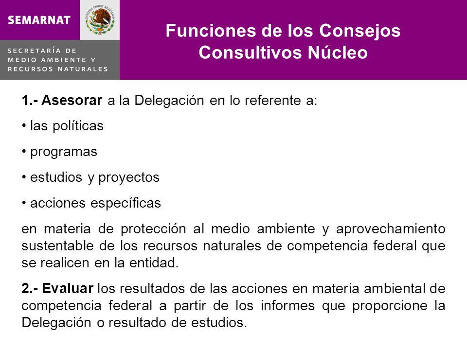 Lo malo 1.- Asesorar a la Delegación en lo referente a: las políticas programas estudios y proyectos acciones específicas en materia de protección al