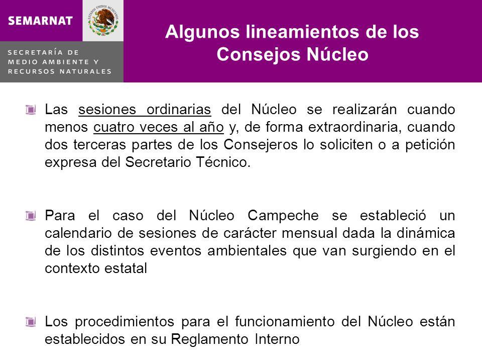 Estructura del Consejo Consultivo Núcleo