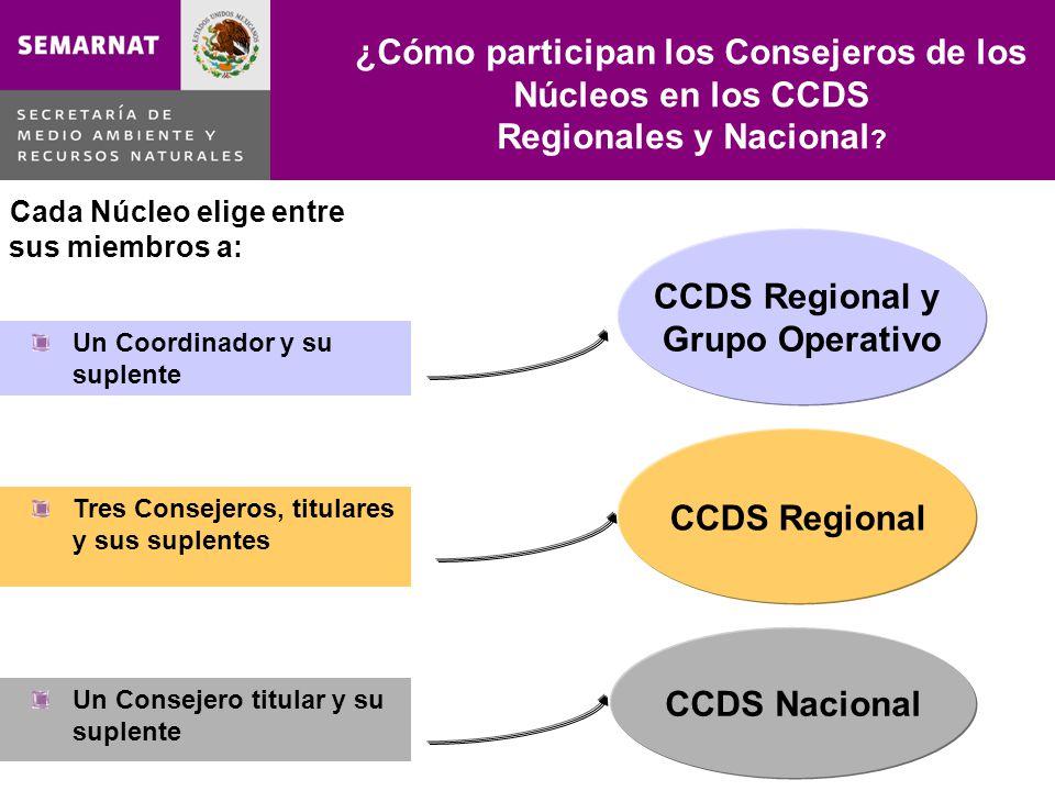 ¿Cómo participan los Consejeros de los Núcleos en los CCDS Regionales y Nacional ? CCDS Regional y Grupo Operativo CCDS Nacional Cada Núcleo elige ent