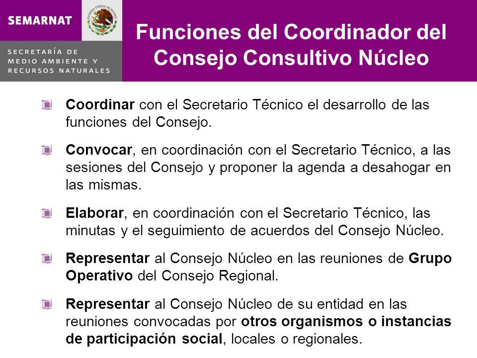 Coordinar con el Secretario Técnico el desarrollo de las funciones del Consejo.