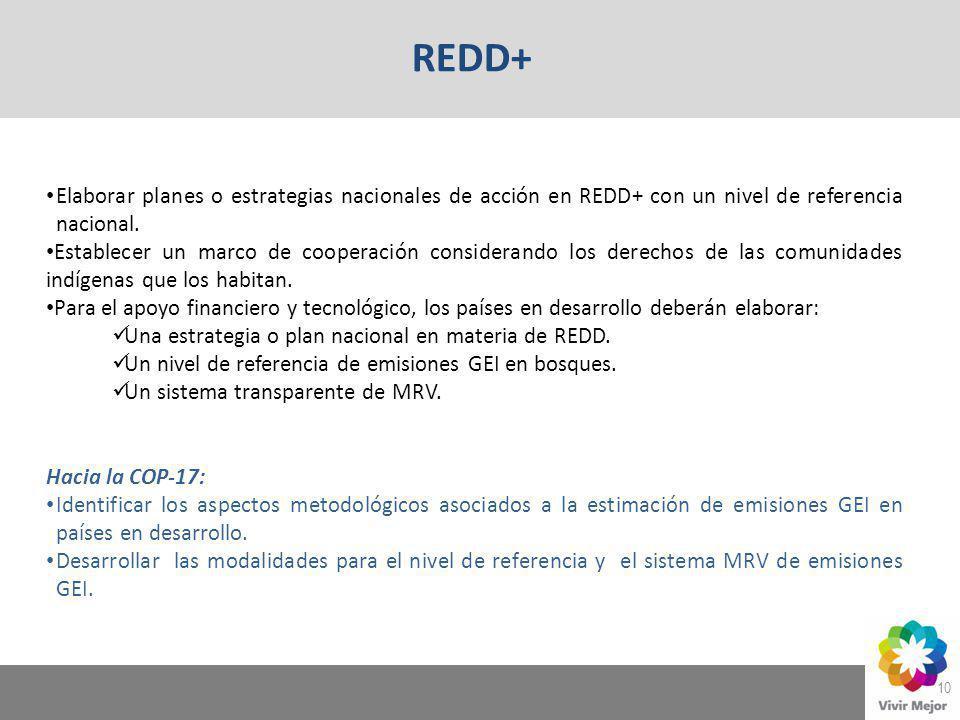 10 Elaborar planes o estrategias nacionales de acción en REDD+ con un nivel de referencia nacional. Establecer un marco de cooperación considerando lo