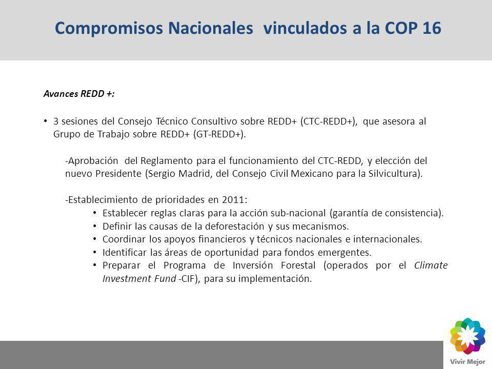 Compromisos Nacionales vinculados a la COP 16 Avances REDD +: 3 sesiones del Consejo Técnico Consultivo sobre REDD+ (CTC-REDD+), que asesora al Grupo