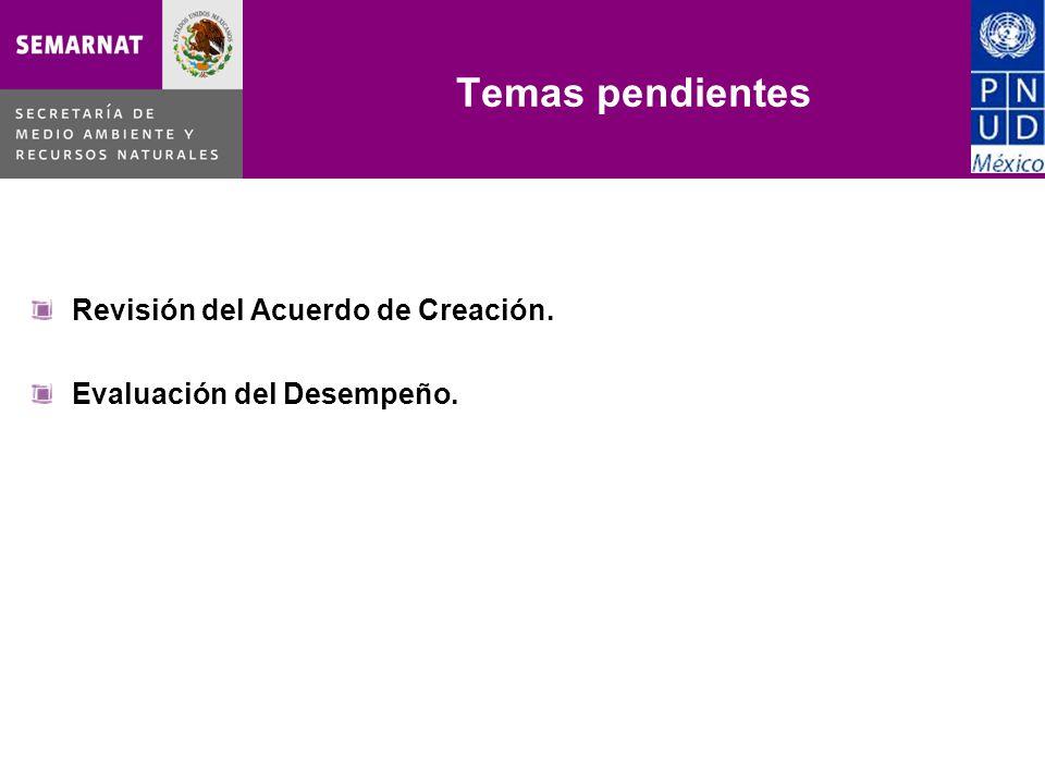 Temas pendientes Revisión del Acuerdo de Creación. Evaluación del Desempeño.