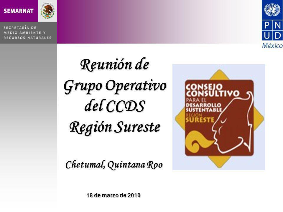 Reunión de Grupo Operativo del CCDS Región Sureste Chetumal, Quintana Roo 18 de marzo de 2010
