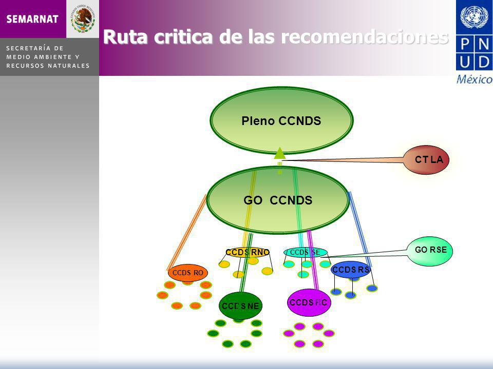 CCDS RO CCDS NE CCDS RC CCDS RS CCDS RNO CCDS SE GO CCNDS GO RSE Pleno CCNDS CT LA Ruta critica de las recomendaciones