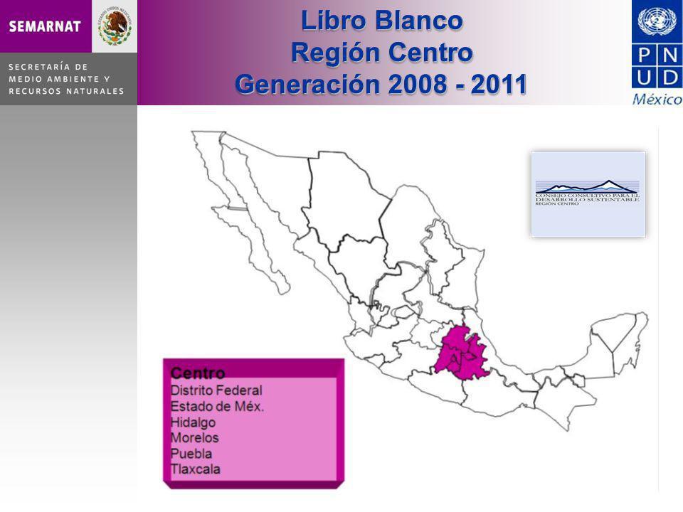 Libro Blanco Región Centro Generación 2008 - 2011