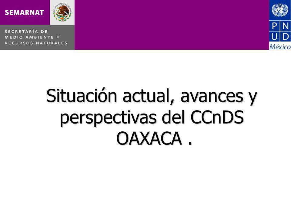 Situación actual, avances y perspectivas del CCnDS OAXACA.