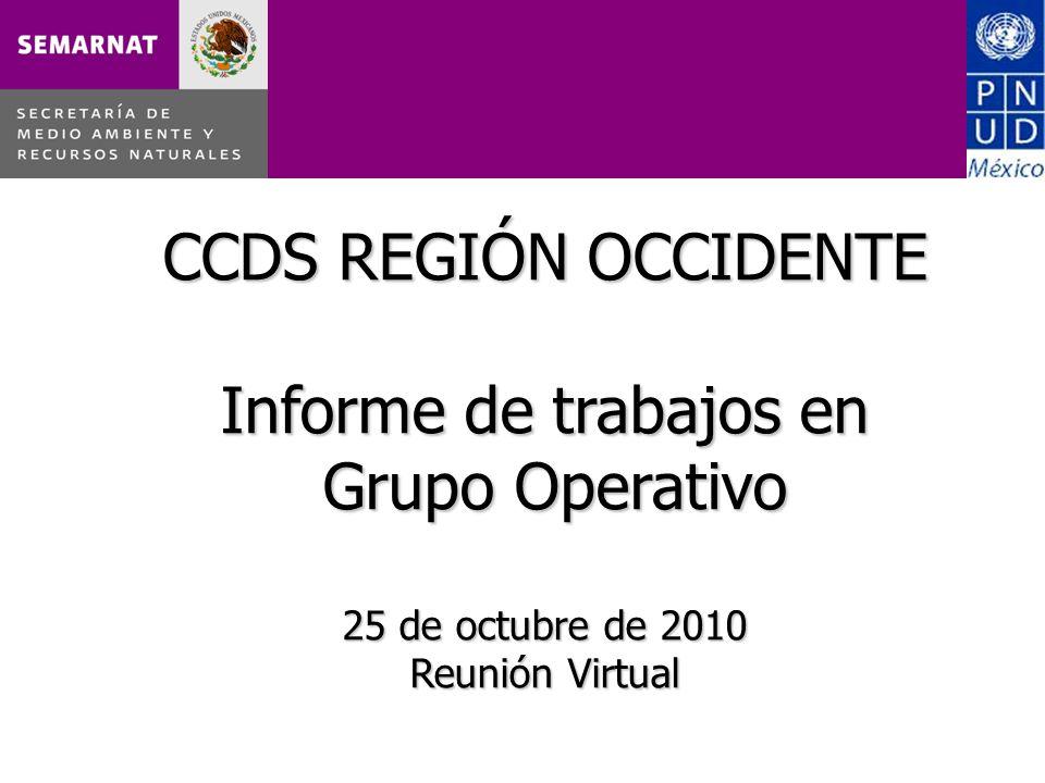 CCDS REGIÓN OCCIDENTE Informe de trabajos en Grupo Operativo 25 de octubre de 2010 Reunión Virtual