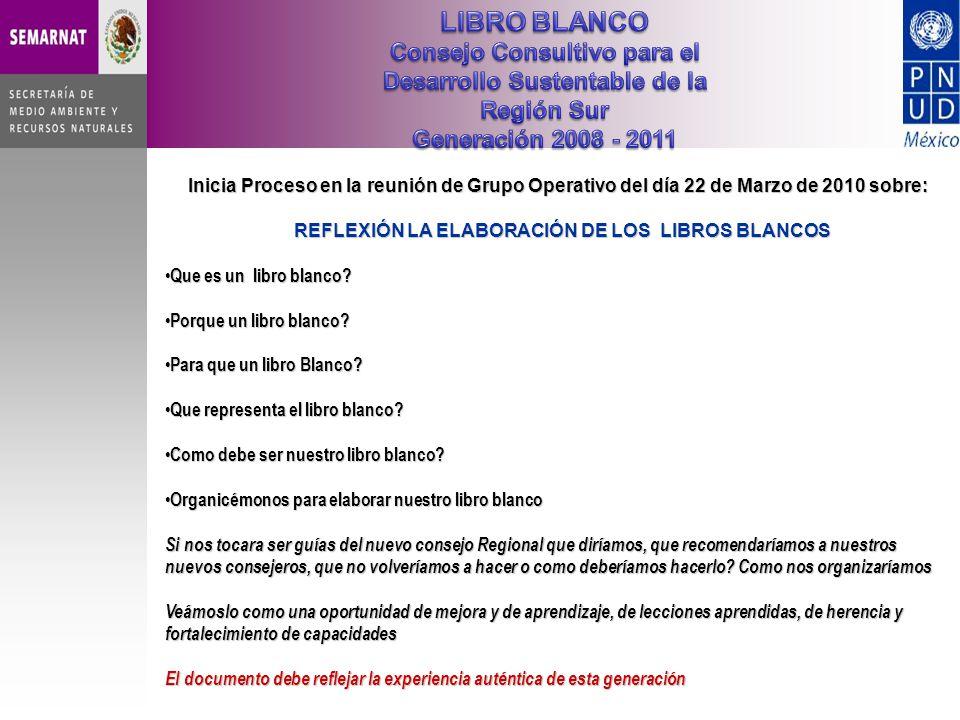 Inicia Proceso en la reunión de Grupo Operativo del día 22 de Marzo de 2010 sobre: REFLEXIÓN LA ELABORACIÓN DE LOS LIBROS BLANCOS REFLEXIÓN LA ELABORACIÓN DE LOS LIBROS BLANCOS Que es un libro blanco.