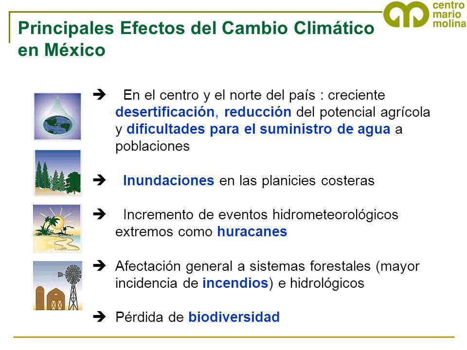 è En el centro y el norte del país : creciente desertificación, reducción del potencial agrícola y dificultades para el suministro de agua a poblacion