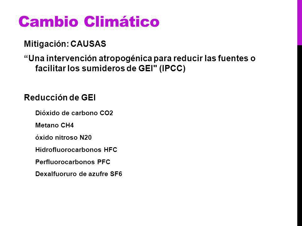 Cambio Climático Mitigación: CAUSAS Una intervención atropogénica para reducir las fuentes o facilitar los sumideros de GEI (IPCC) Reducción de GEI Dióxido de carbono CO2 Metano CH4 óxido nitroso N20 Hidrofluorocarbonos HFC Perfluorocarbonos PFC Dexalfuoruro de azufre SF6