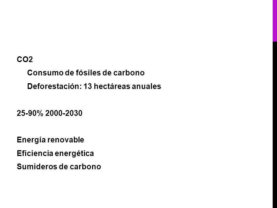 CO2 Consumo de fósiles de carbono Deforestación: 13 hectáreas anuales 25-90% 2000-2030 Energía renovable Eficiencia energética Sumideros de carbono