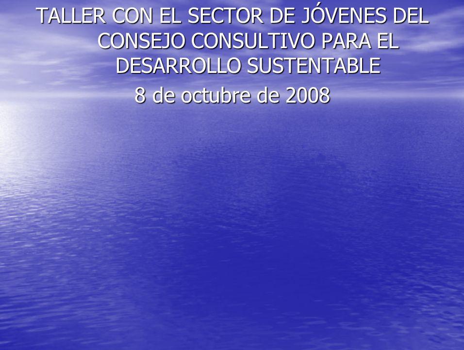TALLER CON EL SECTOR DE JÓVENES DEL CONSEJO CONSULTIVO PARA EL DESARROLLO SUSTENTABLE 8 de octubre de 2008