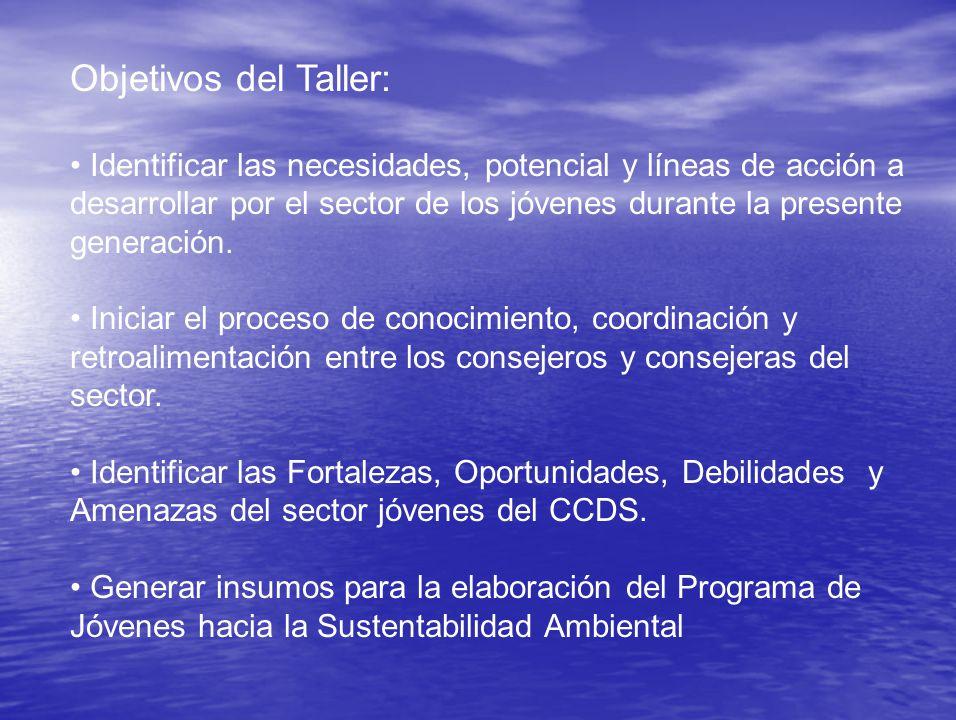 Objetivos del Taller: Identificar las necesidades, potencial y líneas de acción a desarrollar por el sector de los jóvenes durante la presente generación.