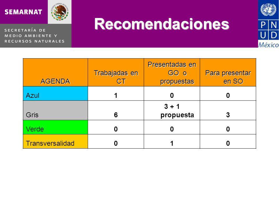 Recomendaciones AGENDA Trabajadas en CT Presentadas en GO o propuestas Para presentar en SO Azul100 Gris6 3 + 1 propuesta3 Verde000 Transversalidad010