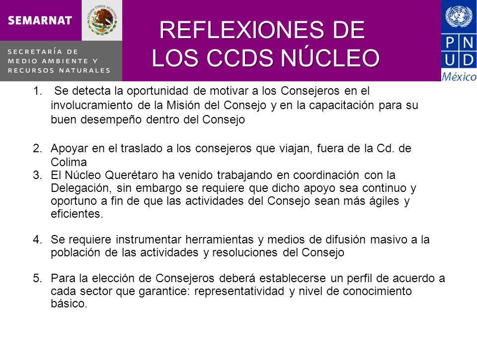 REFLEXIONES DE LOS CCDS NÚCLEO 1.