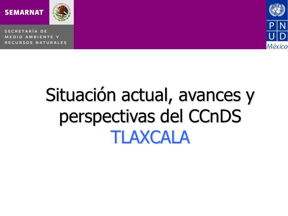 Situación actual, avances y perspectivas del CCnDS TLAXCALA