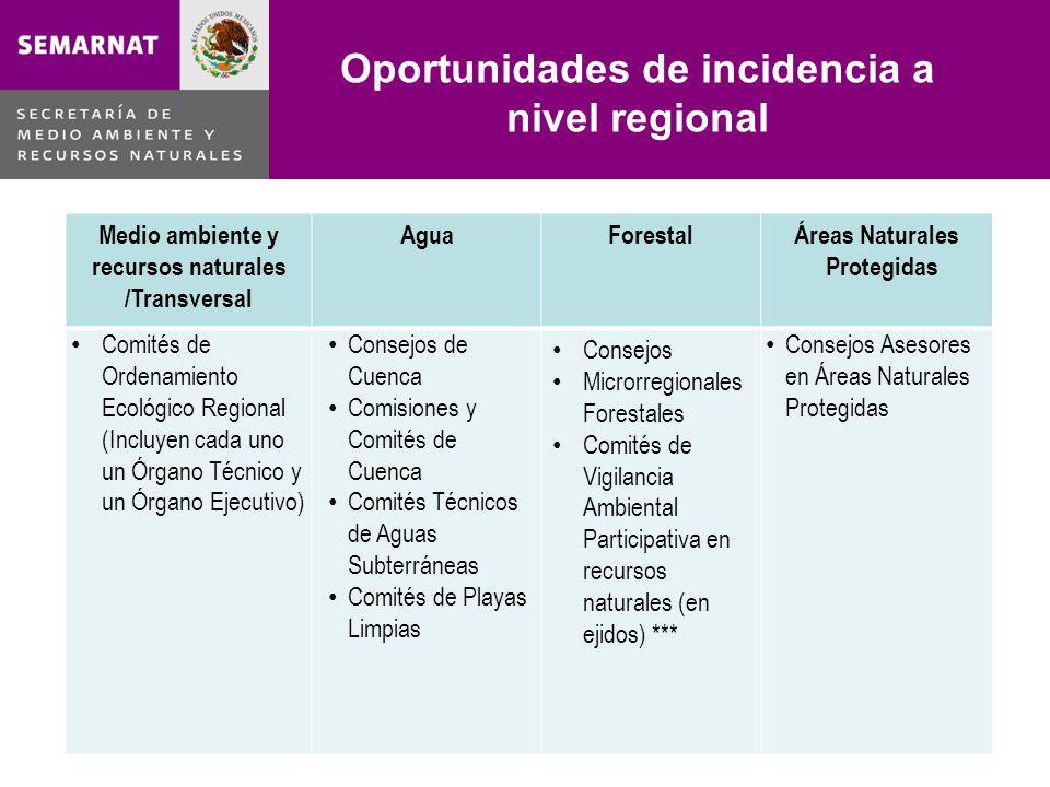 Oportunidades de incidencia a nivel regional Lo malo Medio ambiente y recursos naturales /Transversal AguaForestalÁreas Naturales Protegidas Comités d