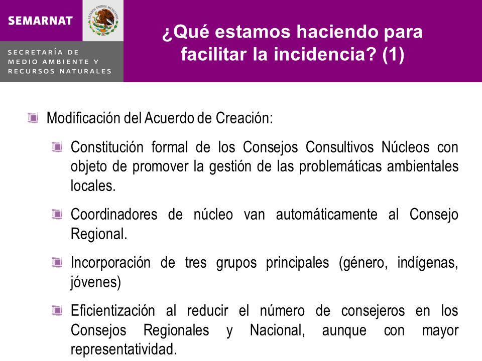 ¿Qué estamos haciendo para facilitar la incidencia? (1) Lo malo Modificación del Acuerdo de Creación: Constitución formal de los Consejos Consultivos