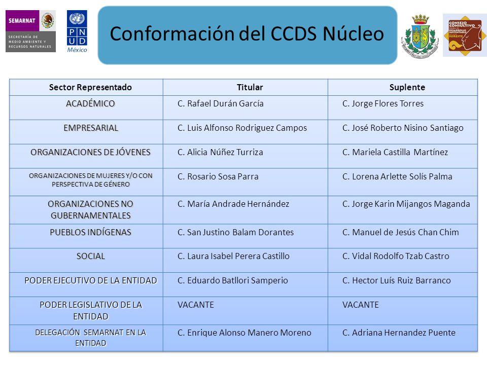 Conformación del CCDS Núcleo