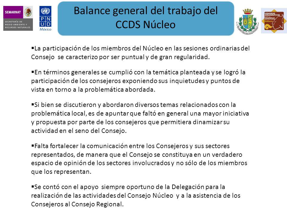 Balance general del trabajo del CCDS Núcleo La participación de los miembros del Núcleo en las sesiones ordinarias del Consejo se caracterizo por ser puntual y de gran regularidad.