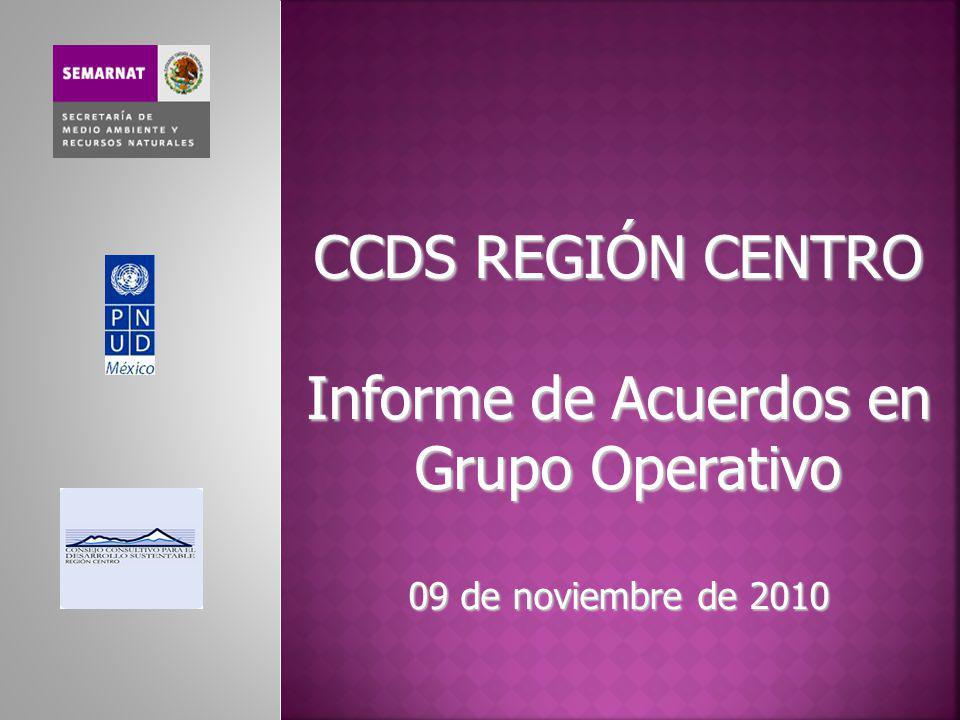 CCDS REGIÓN CENTRO Informe de Acuerdos en Grupo Operativo 09 de noviembre de 2010