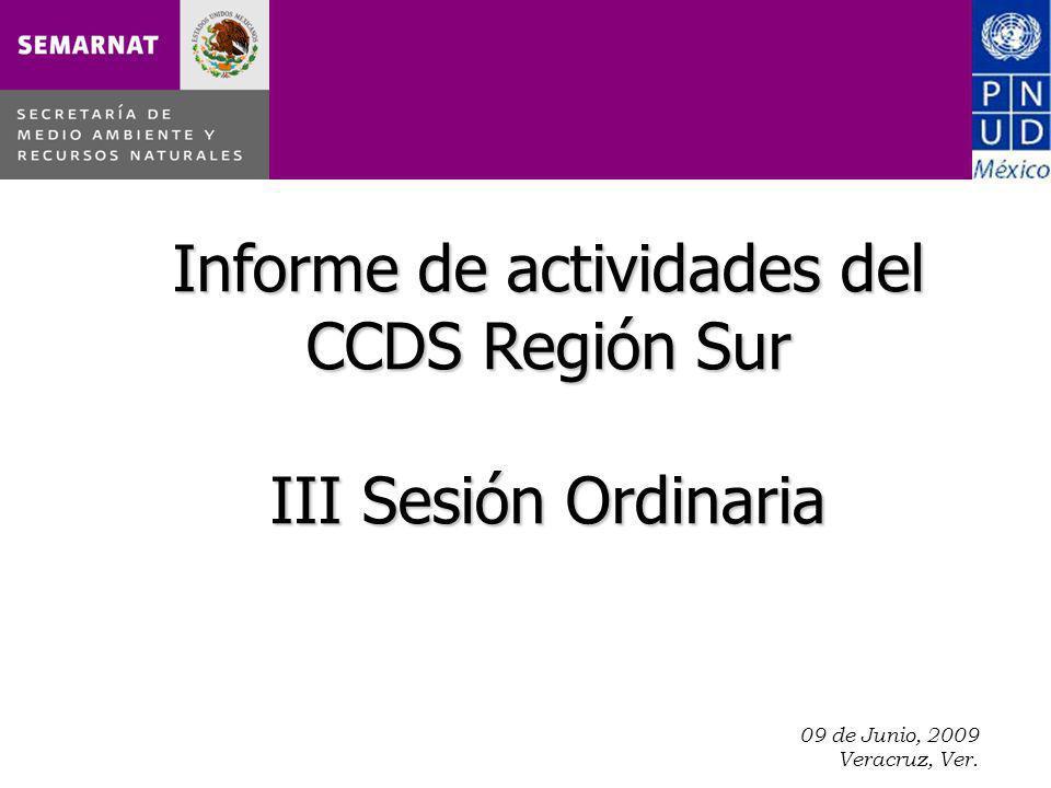 09 de Junio, 2009 Veracruz, Ver. Informe de actividades del CCDS Región Sur III Sesión Ordinaria