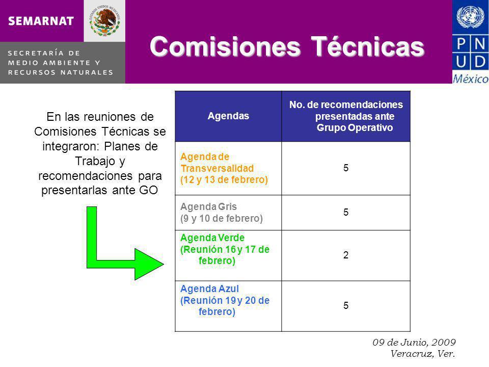 09 de Junio, 2009 Veracruz, Ver. Comisiones Técnicas Agendas No.