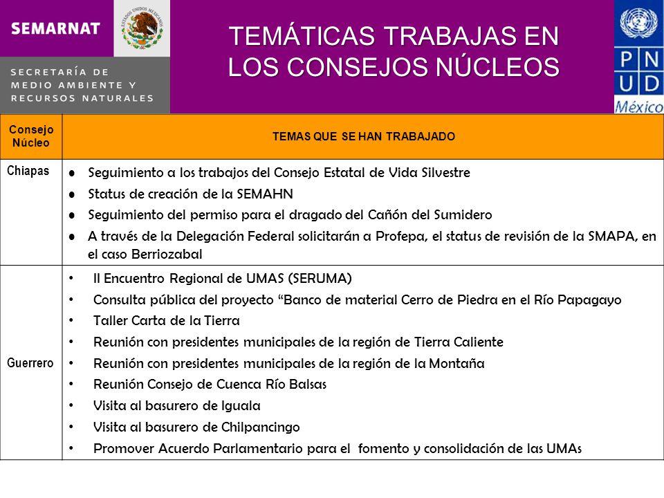 TEMÁTICAS TRABAJAS EN LOS CONSEJOS NÚCLEOS Consejo Núcleo TEMAS QUE SE HAN TRABAJADO Chiapas Seguimiento a los trabajos del Consejo Estatal de Vida Si