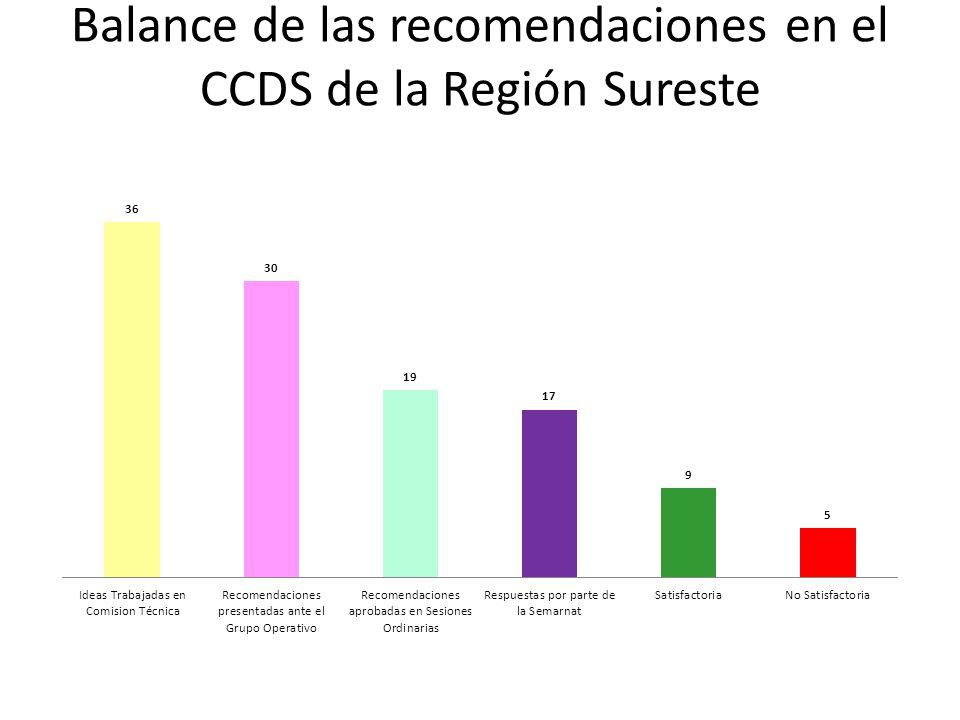 Balance de las recomendaciones en el CCDS de la Región Sureste