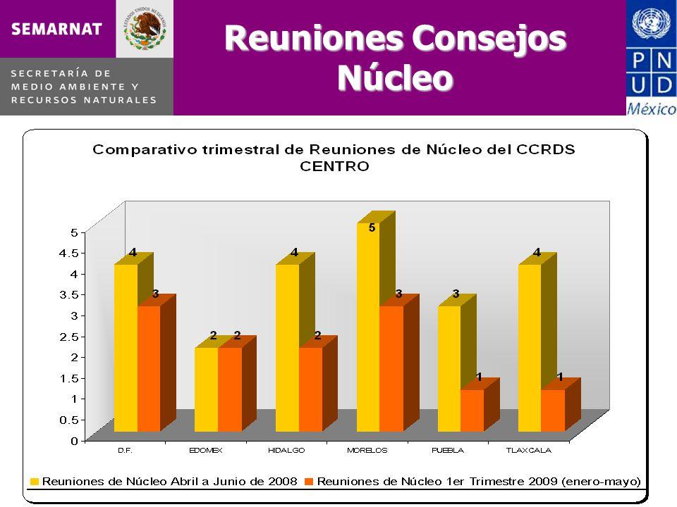 14 de julio de 2009, México, D.F Reuniones Consejos Núcleo