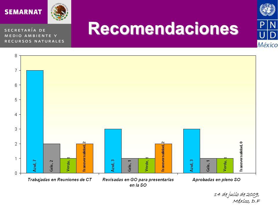 14 de julio de 2009, México, D.F Recomendaciones