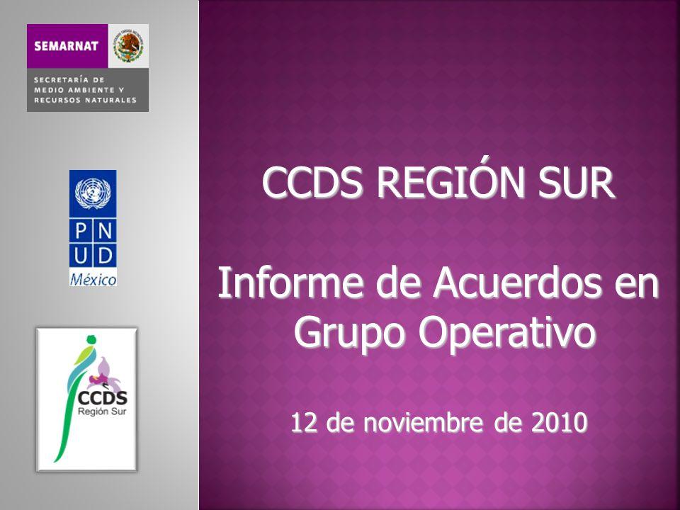 CCDS REGIÓN SUR Informe de Acuerdos en Grupo Operativo 12 de noviembre de 2010