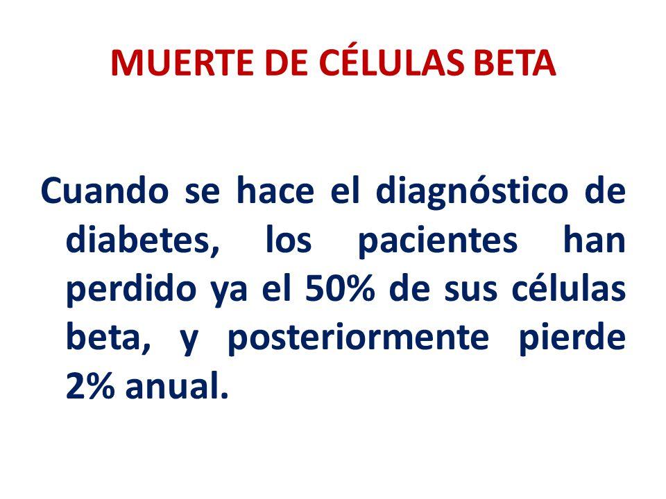 MUERTE DE CÉLULAS BETA Cuando se hace el diagnóstico de diabetes, los pacientes han perdido ya el 50% de sus células beta, y posteriormente pierde 2%
