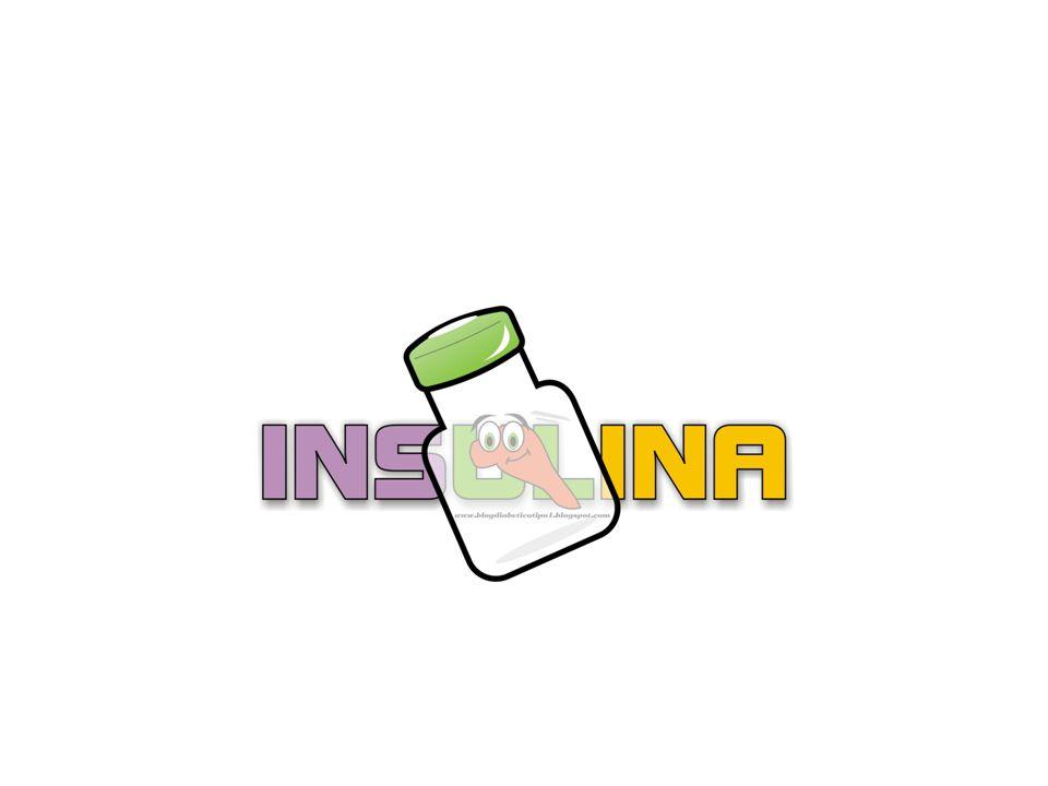 Secreción de insulina Concentración de insulina basal Fase temprana de secreción insulínica Segunda fase de secreción insulínica SECRECIÓN INSULÍNICA BIFÁSICA NORMAL