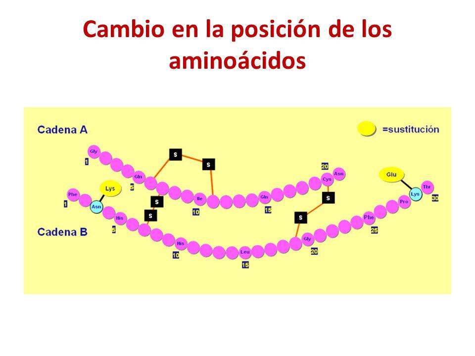 Cambio en la posición de los aminoácidos